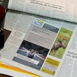 vh-crossmedia | Anzeigengestaltung